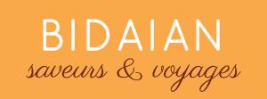 logo-bidaian-fond-jaune
